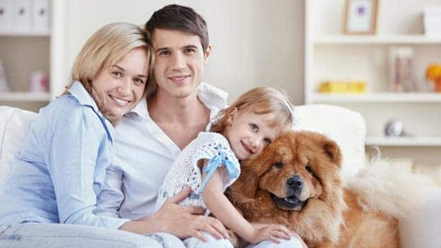 Wills & Trusts dog-young-family Direct Wills Wentworth